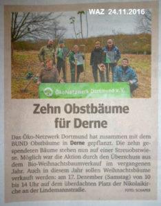 oekonetzwerk-baumpfanzaktion-waz-24-11-2016-web
