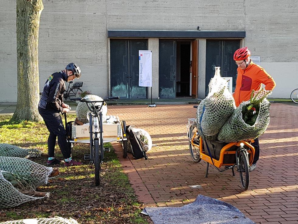 Lastenräder mit Bioweihnachtsbäumen