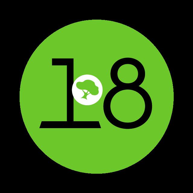 18 Geburtstag des Ökonetzwerk bunte Info Icons vor der Zahl 18